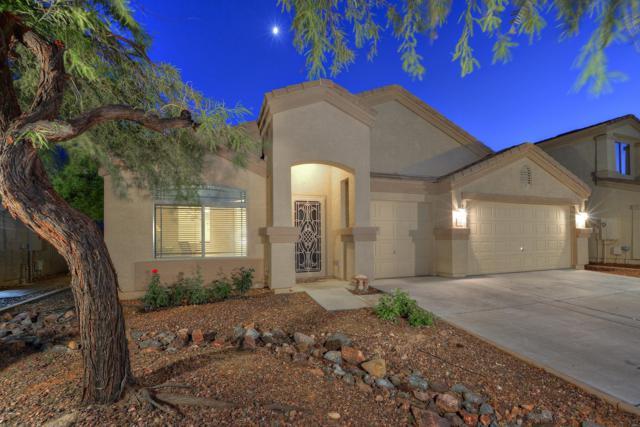 11805 W Montana De Oro Drive, Sun City, AZ 85373 (MLS #5837996) :: The Garcia Group