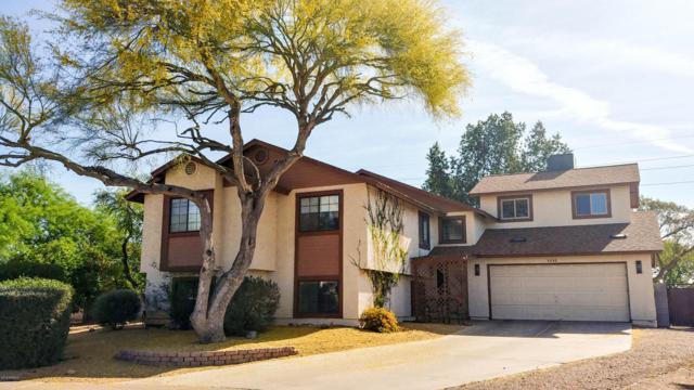 4240 E Holmes Circle, Mesa, AZ 85206 (MLS #5838035) :: The W Group