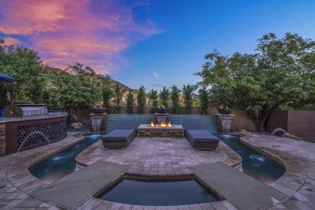 11815 N 135TH Way, Scottsdale, AZ 85259 (MLS #5838106) :: Occasio Realty