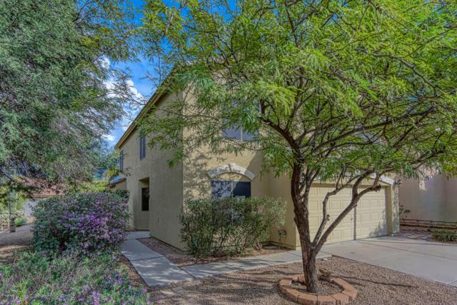 20041 N 20TH Way, Phoenix, AZ 85024 (MLS #5838108) :: Yost Realty Group at RE/MAX Casa Grande