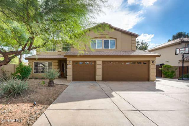 2641 E Pinto Drive, Gilbert, AZ 85296 (MLS #5838126) :: Devor Real Estate Associates
