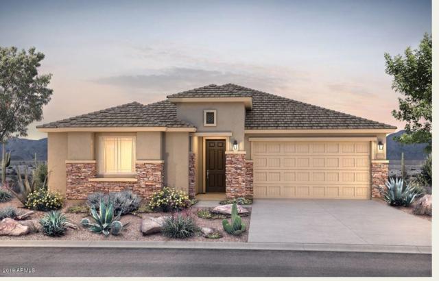 26044 W Quail Avenue, Buckeye, AZ 85396 (MLS #5838130) :: The Results Group