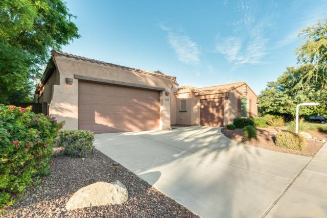 634 E Bellerive Place, Chandler, AZ 85249 (MLS #5838255) :: The Garcia Group