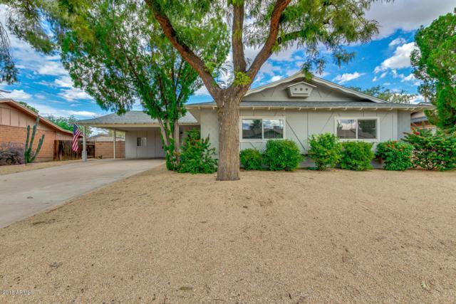 8716 E Monte Vista Road, Scottsdale, AZ 85257 (MLS #5838282) :: The Garcia Group