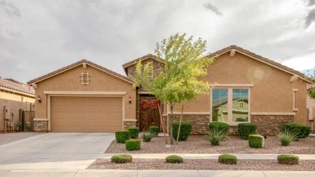 3289 E Azalea Drive, Gilbert, AZ 85298 (MLS #5838373) :: Devor Real Estate Associates