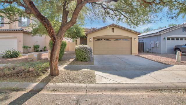 4019 E Ironhorse Road, Gilbert, AZ 85297 (MLS #5838420) :: The Garcia Group