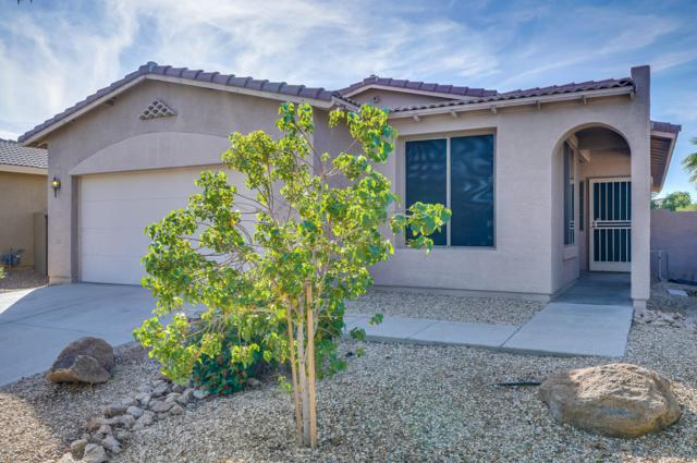 15134 N 138TH Lane, Surprise, AZ 85379 (MLS #5838444) :: The Property Partners at eXp Realty