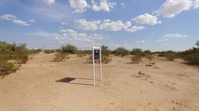 916XX W Anne Avenue, Tonopah, AZ 85354 (MLS #5838477) :: Brett Tanner Home Selling Team