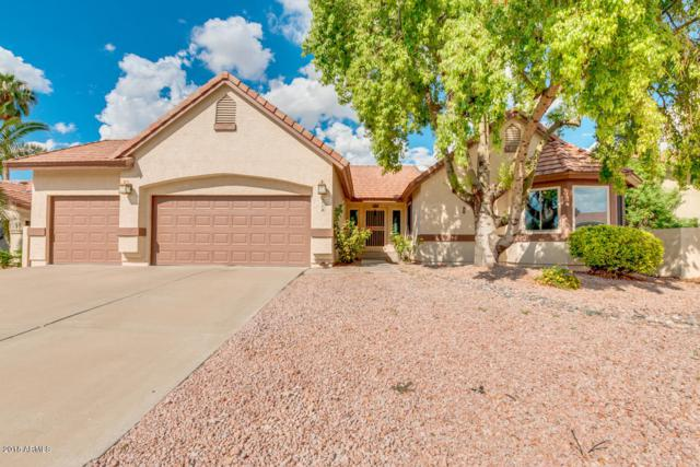 6716 W Piute Avenue, Glendale, AZ 85308 (MLS #5838514) :: The Garcia Group