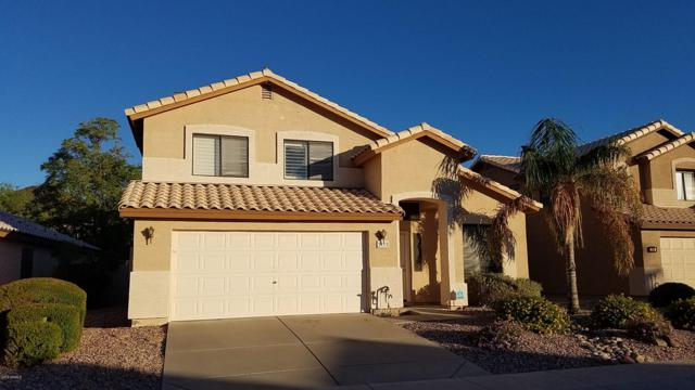 2110 E Daley Lane, Phoenix, AZ 85024 (MLS #5838524) :: Lux Home Group at  Keller Williams Realty Phoenix