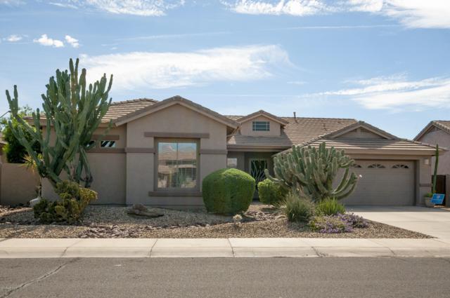 4139 E Loma Vista Street, Gilbert, AZ 85295 (MLS #5838527) :: Lifestyle Partners Team