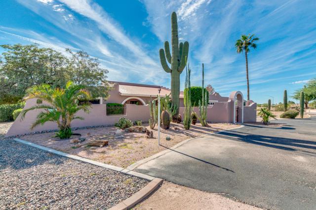 9645 E Brown Road, Mesa, AZ 85207 (MLS #5838544) :: Yost Realty Group at RE/MAX Casa Grande