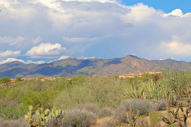 36423 N Red Hawk Lane, Scottsdale, AZ 85262 (MLS #5838614) :: Brett Tanner Home Selling Team