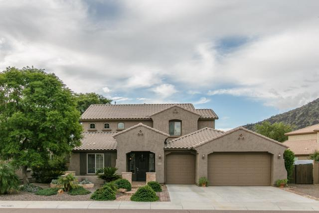 5611 W Cavedale Drive, Phoenix, AZ 85083 (MLS #5838713) :: The Laughton Team