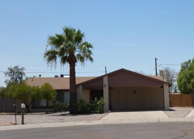 1213 E El Parque Drive, Tempe, AZ 85282 (MLS #5838745) :: Conway Real Estate