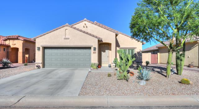 5256 W Pueblo Drive, Eloy, AZ 85131 (MLS #5838930) :: Yost Realty Group at RE/MAX Casa Grande