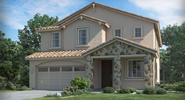 4215 W Palace Station Road, New River, AZ 85087 (MLS #5839030) :: Arizona 1 Real Estate Team