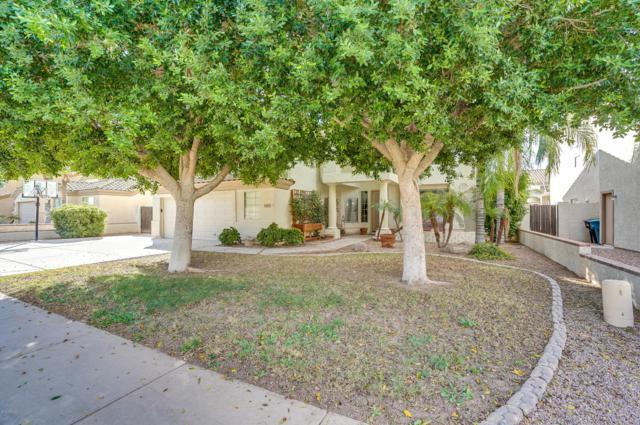 4089 E Pinon Way, Gilbert, AZ 85234 (MLS #5839039) :: Brett Tanner Home Selling Team
