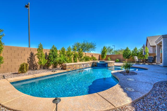3575 N Balboa Drive, Florence, AZ 85132 (MLS #5839084) :: The Jesse Herfel Real Estate Group