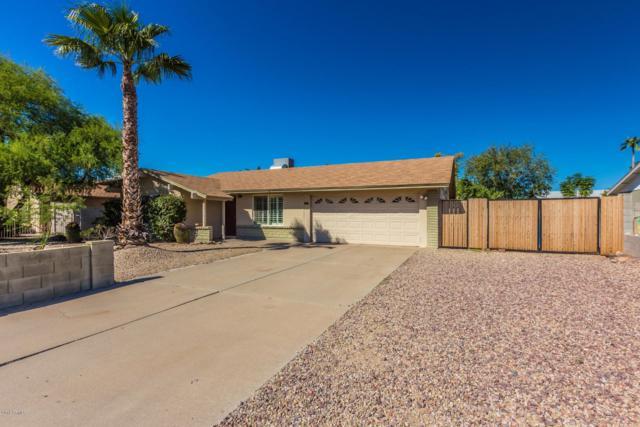 1508 W Renee Drive, Phoenix, AZ 85027 (MLS #5839221) :: The Pete Dijkstra Team