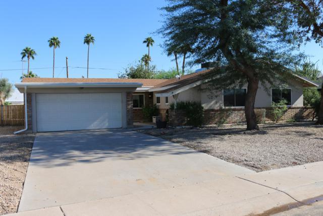 9061 N 37TH Avenue, Phoenix, AZ 85051 (MLS #5839280) :: The Property Partners at eXp Realty