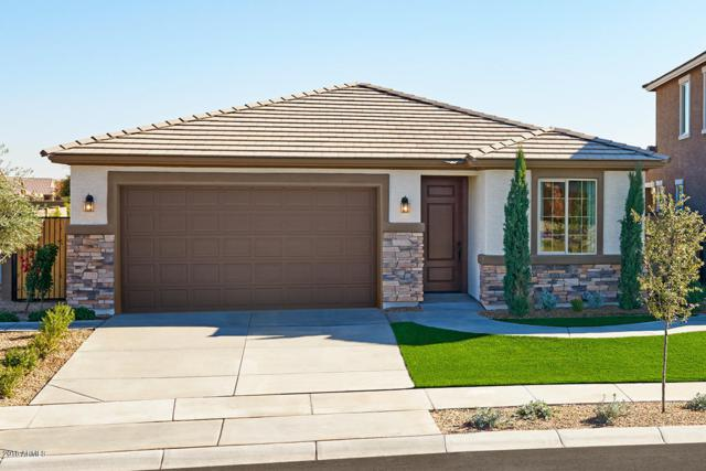 11349 N 165TH Lane, Surprise, AZ 85388 (MLS #5839507) :: The Everest Team at My Home Group
