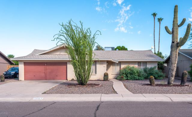 1954 E Balboa Drive, Tempe, AZ 85282 (MLS #5839739) :: The Garcia Group