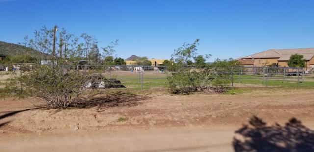 3641X N 15th Avenue, Phoenix, AZ 85086 (MLS #5839786) :: Revelation Real Estate