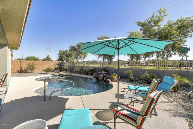 18623 W Pioneer Street, Goodyear, AZ 85338 (MLS #5839822) :: Kortright Group - West USA Realty