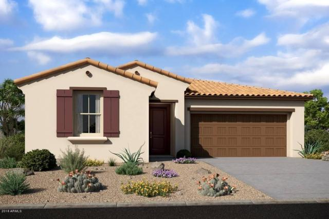 21041 W Almeria Road, Buckeye, AZ 85396 (MLS #5839850) :: The Results Group