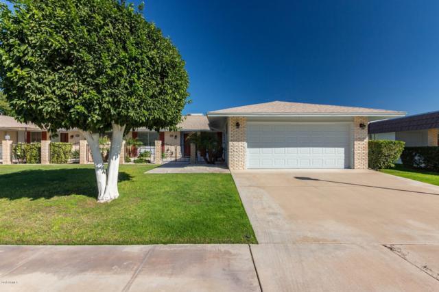 10518 W Roundelay Circle, Sun City, AZ 85351 (MLS #5839881) :: Riddle Realty