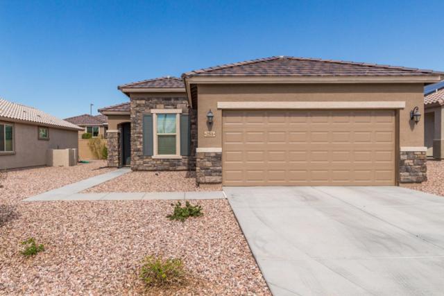22974 W Devin Drive, Buckeye, AZ 85326 (MLS #5839924) :: Devor Real Estate Associates