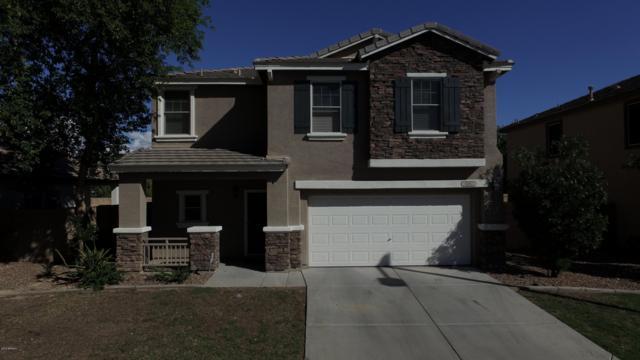 15957 N 171ST Drive, Surprise, AZ 85388 (MLS #5839969) :: Yost Realty Group at RE/MAX Casa Grande