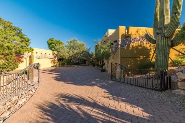 23167 N 118th Way, Scottsdale, AZ 85255 (MLS #5840016) :: RE/MAX Excalibur