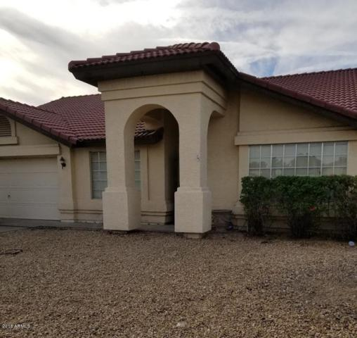 7709 W Cholla Street, Peoria, AZ 85345 (MLS #5840038) :: Kelly Cook Real Estate Group