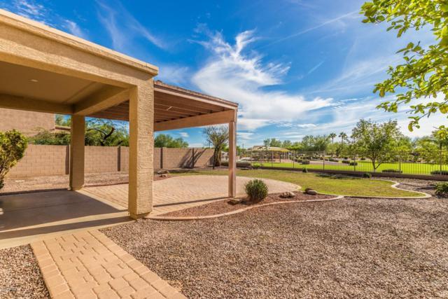 545 E Kapasi Lane, San Tan Valley, AZ 85140 (MLS #5840100) :: The W Group