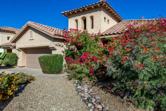 4224 E Desert Marigold Drive, Cave Creek, AZ 85331 (MLS #5840207) :: The Property Partners at eXp Realty