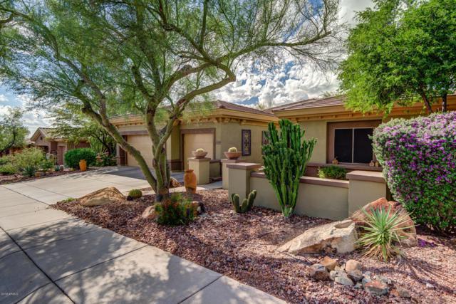 41814 N Rolling Green Way, Anthem, AZ 85086 (MLS #5840387) :: The Daniel Montez Real Estate Group