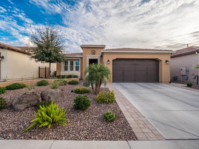 297 E Laddoos Avenue, San Tan Valley, AZ 85140 (MLS #5840388) :: Yost Realty Group at RE/MAX Casa Grande