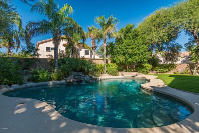 5342 E Hartford Avenue, Scottsdale, AZ 85254 (MLS #5840393) :: Lux Home Group at  Keller Williams Realty Phoenix