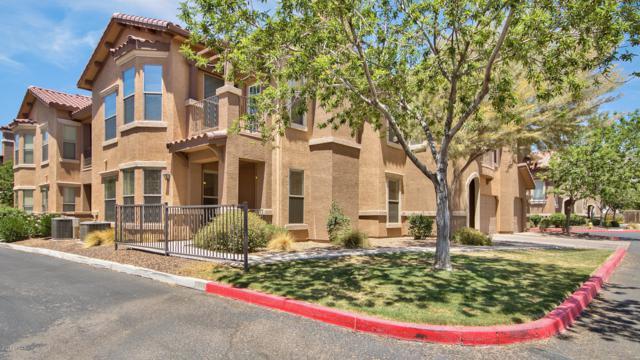 14250 W Wigwam Boulevard #1212, Litchfield Park, AZ 85340 (MLS #5840478) :: Phoenix Property Group