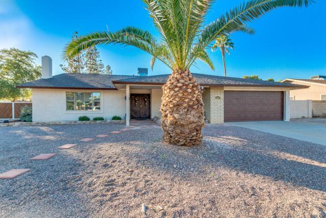 4541 E Arapahoe Street, Phoenix, AZ 85044 (MLS #5840496) :: Team Wilson Real Estate