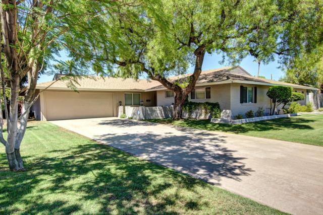 626 E Orangewood Avenue, Phoenix, AZ 85020 (MLS #5840502) :: The W Group