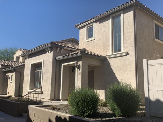 26534 N 53rd Glen, Phoenix, AZ 85083 (MLS #5840552) :: The Jesse Herfel Real Estate Group
