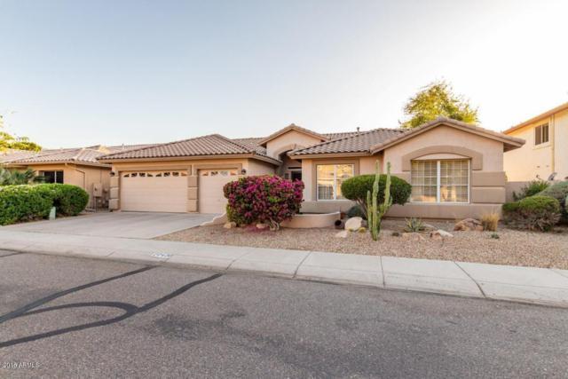 20420 N 53RD Avenue, Glendale, AZ 85308 (MLS #5840586) :: The Garcia Group