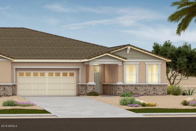 5053 N 145TH Drive, Litchfield Park, AZ 85340 (MLS #5840648) :: The Daniel Montez Real Estate Group