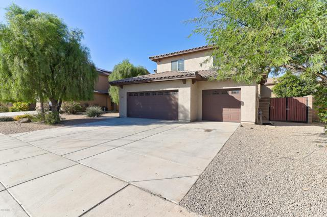 16006 W Port Royale Lane, Surprise, AZ 85379 (MLS #5840725) :: Lucido Agency