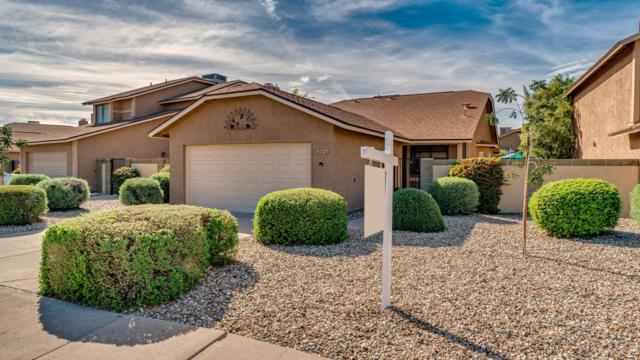 12846 S Wakial Loop, Phoenix, AZ 85044 (MLS #5840749) :: Team Wilson Real Estate