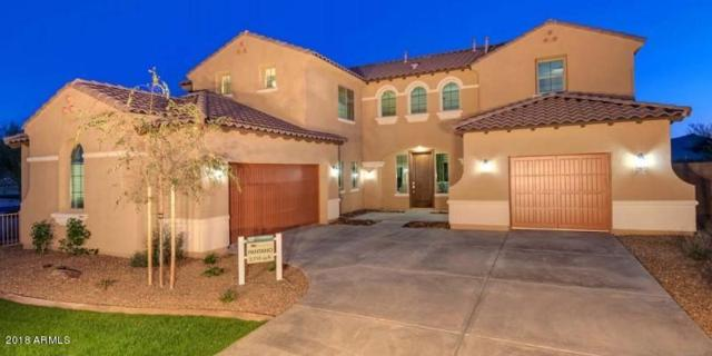 20879 E Via Del Sol, Queen Creek, AZ 85142 (MLS #5840815) :: Revelation Real Estate