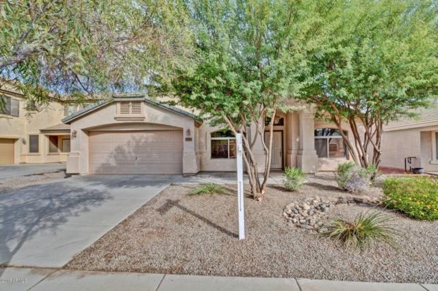 17848 W Voltaire Street, Surprise, AZ 85388 (MLS #5840853) :: Team Wilson Real Estate